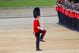 The Colonel's Review 2013. Horse Guards Parade, Westminster, London SW1,  United Kingdom, on 08 June 2013 at 10:33, image #148