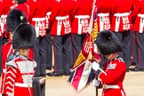 The Colonel's Review 2013: The Colour has been uncased. A detailed photographic record of the uncasing can be found in The Major Generals Review and The Colonels Review.. Horse Guards Parade, Westminster, London SW1,  United Kingdom, on 08 June 2013 at 10:33, image #150