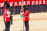 The Colonel's Review 2013: The Colour has been uncased. A detailed photographic record of the uncasing can be found in The Major Generals Review and The Colonels Review.. Horse Guards Parade, Westminster, London SW1,  United Kingdom, on 08 June 2013 at 10:33, image #151