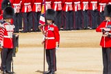 The Colonel's Review 2013: The Colour has been uncased. A detailed photographic record of the uncasing can be found in The Major Generals Review and The Colonels Review.. Horse Guards Parade, Westminster, London SW1,  United Kingdom, on 08 June 2013 at 10:33, image #152