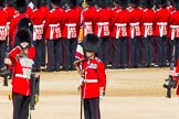 The Colonel's Review 2013: The Colour has been uncased. A detailed photographic record of the uncasing can be found in The Major Generals Review and The Colonels Review.. Horse Guards Parade, Westminster, London SW1,  United Kingdom, on 08 June 2013 at 10:33, image #153
