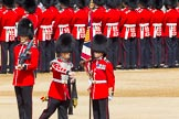 The Colonel's Review 2013: The Colour has been uncased. A detailed photographic record of the uncasing can be found in The Major Generals Review and The Colonels Review.. Horse Guards Parade, Westminster, London SW1,  United Kingdom, on 08 June 2013 at 10:33, image #154