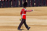 The Colonel's Review 2013: Welsh Guards Drummer.. Horse Guards Parade, Westminster, London SW1,  United Kingdom, on 08 June 2013 at 10:33, image #155