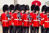 The Colonel's Review 2013: Welsh Guards.. Horse Guards Parade, Westminster, London SW1,  United Kingdom, on 08 June 2013 at 10:36, image #169