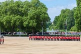 The Colonel's Review 2013: The King's Troop Royal Horse Artillery arrives, and will take position between No. 1 Guard and St. James's Park.. Horse Guards Parade, Westminster, London SW1,  United Kingdom, on 08 June 2013 at 10:38, image #179