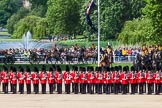 The Colonel's Review 2013: The King's Troop Royal Horse Artillery takes position between No. 1 Guard and St. James's Park.. Horse Guards Parade, Westminster, London SW1,  United Kingdom, on 08 June 2013 at 10:39, image #185