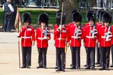The Colonel's Review 2013. Horse Guards Parade, Westminster, London SW1,  United Kingdom, on 08 June 2013 at 10:42, image #200