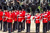 The Colonel's Review 2013: No. 2 Guard, 1 st Battalion Welsh Guards with Captain B Bardsley.. Horse Guards Parade, Westminster, London SW1,  United Kingdom, on 08 June 2013 at 10:42, image #204