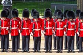 The Colonel's Review 2013: No. 2 Guard, 1 st Battalion Welsh Guards are mounting their bayonets.. Horse Guards Parade, Westminster, London SW1,  United Kingdom, on 08 June 2013 at 10:43, image #205