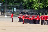 The Colonel's Review 2013: No. 3 Guard, 1st Battalion Welsh Guards, at the gap in the line for members of the Royal Family.. Horse Guards Parade, Westminster, London SW1,  United Kingdom, on 08 June 2013 at 10:45, image #212
