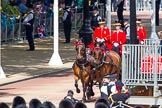 The Colonel's Review 2013. Horse Guards Parade, Westminster, London SW1,  United Kingdom, on 08 June 2013 at 10:50, image #216