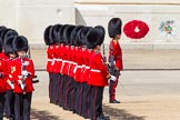 The Colonel's Review 2013: No. 3 Guard, 1st Battalion Welsh Guards, at the gap in the line for members of the Royal Family.. Horse Guards Parade, Westminster, London SW1,  United Kingdom, on 08 June 2013 at 10:50, image #218