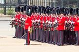 The Colonel's Review 2013: No. 3 Guard, 1st Battalion Welsh Guards, at the gap in the line for members of the Royal Family.. Horse Guards Parade, Westminster, London SW1,  United Kingdom, on 08 June 2013 at 10:51, image #231