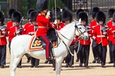 The Colonel's Review 2013: The Field Officer in Brigade Waiting, Lieutenant Colonel Dino Bossi, Welsh Guards.. Horse Guards Parade, Westminster, London SW1,  United Kingdom, on 08 June 2013 at 10:52, image #232