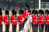 The Colonel's Review 2013: The Field Officer in Brigade Waiting, Lieutenant Colonel Dino Bossi, Welsh Guards in the center of the line.. Horse Guards Parade, Westminster, London SW1,  United Kingdom, on 08 June 2013 at 10:54, image #237