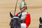 The Colonel's Review 2013: The Trooper of The Life Guards, following the Brigade Major at the head of the Royal Procession.. Horse Guards Parade, Westminster, London SW1,  United Kingdom, on 08 June 2013 at 10:57, image #261