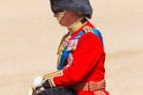 The Colonel's Review 2013: As the Colonel taking the salute, Colonel Welsh Guards, HRH The Prince of Wales.. Horse Guards Parade, Westminster, London SW1,  United Kingdom, on 08 June 2013 at 11:00, image #296
