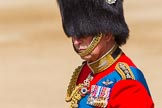 The Colonel's Review 2013: HRH The Prince of Wales, Colonel Welsh Guards.. Horse Guards Parade, Westminster, London SW1,  United Kingdom, on 08 June 2013 at 11:01, image #316