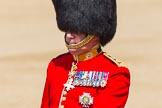 The Colonel's Review 2013: Colonel Coldstream Guards General Sir James Bucknall during the Inspection of the Line.. Horse Guards Parade, Westminster, London SW1,  United Kingdom, on 08 June 2013 at 11:02, image #322