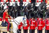The Colonel's Review 2013: Major General Commanding the Household Division and General Officer Commanding London District, Major George Norton during the Inspection of the Line.. Horse Guards Parade, Westminster, London SW1,  United Kingdom, on 08 June 2013 at 11:03, image #348