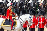 The Colonel's Review 2013: Major General Commanding the Household Division and General Officer Commanding London District, Major George Norton during the Inspection of the Line.. Horse Guards Parade, Westminster, London SW1,  United Kingdom, on 08 June 2013 at 11:03, image #349