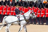 The Colonel's Review 2013: The Queen's Head Coachman, Mark Hargreaves.. Horse Guards Parade, Westminster, London SW1,  United Kingdom, on 08 June 2013 at 11:03, image #352