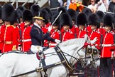 The Colonel's Review 2013: The Queen's Head Coachman, Mark Hargreaves.. Horse Guards Parade, Westminster, London SW1,  United Kingdom, on 08 June 2013 at 11:03, image #353