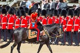 The Colonel's Review 2013: HRH The Prince of Wales, Colonel Welsh Guards saluting the Colour during the Inspection of the Line.. Horse Guards Parade, Westminster, London SW1,  United Kingdom, on 08 June 2013 at 11:03, image #356