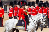 The Colonel's Review 2013. Horse Guards Parade, Westminster, London SW1,  United Kingdom, on 08 June 2013 at 11:03, image #358