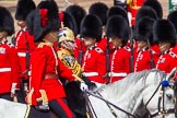 The Colonel's Review 2013. Horse Guards Parade, Westminster, London SW1,  United Kingdom, on 08 June 2013 at 11:03, image #359