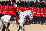 The Colonel's Review 2013. Horse Guards Parade, Westminster, London SW1,  United Kingdom, on 08 June 2013 at 11:03, image #360