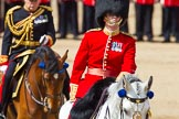 The Colonel's Review 2013. Horse Guards Parade, Westminster, London SW1,  United Kingdom, on 08 June 2013 at 11:06, image #396