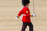 The Colonel's Review 2013: No. 1 Guard the Regimental Sergeant Major, WO1 Martin Topps, Welsh Guards.. Horse Guards Parade, Westminster, London SW1,  United Kingdom, on 08 June 2013 at 11:17, image #489