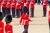 The Colonel's Review 2013: No. 1 Guard the Regimental Sergeant Major, WO1 Martin Topps, Welsh Guards marches forward followed by the Ensign.. Horse Guards Parade, Westminster, London SW1,  United Kingdom, on 08 June 2013 at 11:18, image #498