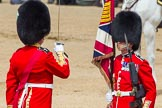 The Colonel's Review 2013: No. 1 Guard the Regimental Sergeant Major, WO1 Martin Topps, Welsh Guards saluting the Colour with his sword.. Horse Guards Parade, Westminster, London SW1,  United Kingdom, on 08 June 2013 at 11:19, image #501