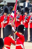 The Colonel's Review 2013: The Ensign, Second Lieutenant Joel Dinwiddle, takes posession of the Colour from the Regimental Sergeant Major, WO1 Martin Topps, Welsh Guards.. Horse Guards Parade, Westminster, London SW1,  United Kingdom, on 08 June 2013 at 11:19, image #521