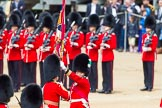 The Colonel's Review 2013: The Ensign, Second Lieutenant Joel Dinwiddle, takes posession of the Colour from the Regimental Sergeant Major, WO1 Martin Topps, Welsh Guards.. Horse Guards Parade, Westminster, London SW1,  United Kingdom, on 08 June 2013 at 11:19, image #522