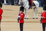The Colonel's Review 2013: The second (unnamed) sentry, presenting arms whilst the National Anthem is played.. Horse Guards Parade, Westminster, London SW1,  United Kingdom, on 08 June 2013 at 11:20, image #531