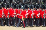 The Colonel's Review 2013: The Ensign troops the Colour along No. 4 Guard, Nijmegen Company Grenadier Guards.. Horse Guards Parade, Westminster, London SW1,  United Kingdom, on 08 June 2013 at 11:24, image #575