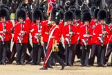 The Colonel's Review 2013: The Ensign troops the Colour along No. 3 Guard, 1st Battalion Welsh Guards.. Horse Guards Parade, Westminster, London SW1,  United Kingdom, on 08 June 2013 at 11:25, image #577