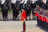 The Colonel's Review 2013: The guards are ready and in position for the March Past.. Horse Guards Parade, Westminster, London SW1,  United Kingdom, on 08 June 2013 at 11:29, image #603