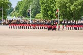The Colonel's Review 2013: Guardmen are transforming to form divisions.. Horse Guards Parade, Westminster, London SW1,  United Kingdom, on 08 June 2013 at 11:28, image #596