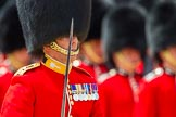 The Colonel's Review 2013: A close-up of the Field Officer in Brigade Waiting, Lieutenant Colonel Dino Bossi, Welsh Guards, with his word drawn, during the March Past.. Horse Guards Parade, Westminster, London SW1,  United Kingdom, on 08 June 2013 at 11:32, image #622