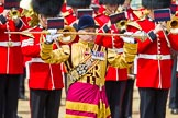 The Colonel's Review 2013: A close-up view of Drum Major Stephen Staite, Grenadier Guards.. Horse Guards Parade, Westminster, London SW1,  United Kingdom, on 08 June 2013 at 11:36, image #649
