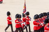 The Colonel's Review 2013: The Colour Party, carrying the Colour, during the March Past in Quick Time.. Horse Guards Parade, Westminster, London SW1,  United Kingdom, on 08 June 2013 at 11:43, image #691