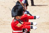 The Colonel's Review 2013: The Colour Party, carrying the Colour, during the March Past in Quick Time.. Horse Guards Parade, Westminster, London SW1,  United Kingdom, on 08 June 2013 at 11:43, image #692