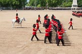 The Colonel's Review 2013: The March Past in Quick Time - Coldstream Guards.. Horse Guards Parade, Westminster, London SW1,  United Kingdom, on 08 June 2013 at 11:44, image #697