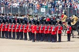 The Colonel's Review 2013: The Mounted Bands of the Household Cavalry are ready to leave, they follow the Royal Horse Artillery to march off via The Mall.. Horse Guards Parade, Westminster, London SW1,  United Kingdom, on 08 June 2013 at 12:02, image #805