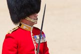 The Colonel's Review 2013: The Field Officer in Brigade Waiting, Lieutenant Colonel Dino Bossi, Welsh Guards, salutes Her Majesty before asking permission to march off.. Horse Guards Parade, Westminster, London SW1,  United Kingdom, on 08 June 2013 at 12:06, image #824