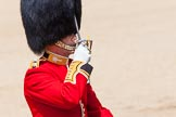 The Colonel's Review 2013: The Field Officer in Brigade Waiting, Lieutenant Colonel Dino Bossi, Welsh Guards, salutes Her Majesty before asking permission to march off.. Horse Guards Parade, Westminster, London SW1,  United Kingdom, on 08 June 2013 at 12:06, image #825